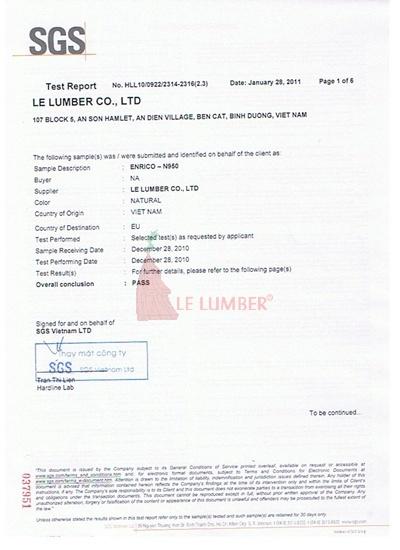 SGS report Enrico