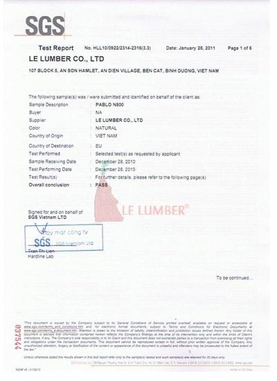 SGS-report-Pablo